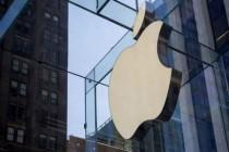 苹果下调一季度产量的原因是?