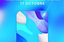 外媒:华为将在10月17日在法国发布新机,可能具有屏下摄像头技术